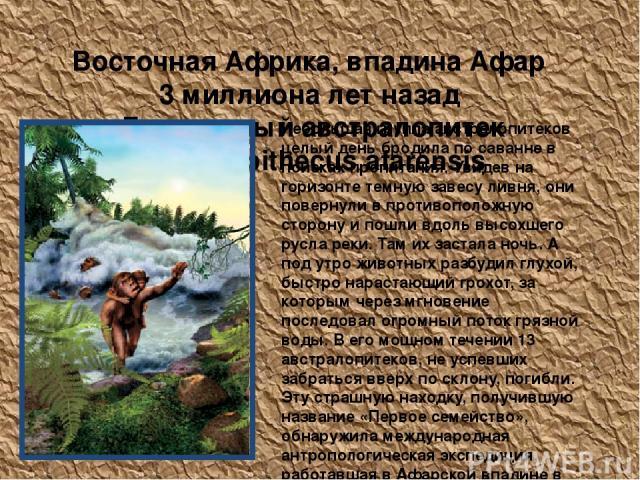 Восточная Африка, впадина Афар 3 миллиона лет назад Грацильный австралопитек Australopithecus afarensis Небольшая группа австралопитеков целый день бродила по саванне в поисках пропитания. Увидев на горизонте темную завесу ливня, они повернули в про…