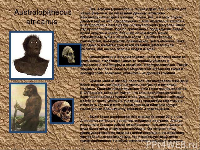 Australopithecus africanus Юж. Африка (Трансвааль), 3.3 (или даже 3.5) - 2.5 млн. лет назад. (Впрочем, по последним данным, возможно, максимальный возраст находок - 3 млн. лет., и в этом случае данный вид не жил одновременно с Australopithecus afare…
