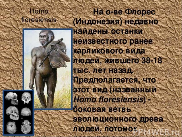 Homo floresiensis На о-ве Флорес (Индонезия) недавно найдены останки неизвестного ранее карликового вида людей, жившего 38-18 тыс. лет назад. Предполагается, что этот вид (названный Homo floresiensis) - боковая ветвь эволюционного древа людей, потом…