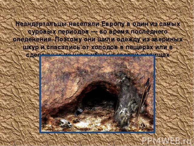 Неандертальцы населяли Европу в один из самых суровых периодов — во время последнего оледенения. Поэтому они шили одежду из звериных шкур и спасались от холодов в пещерах или в сделанных из шкур убитых зверей жилищах