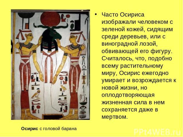 Часто Осириса изображали человеком с зеленой кожей, сидящим среди деревьев, или с виноградной лозой, обвивающей его фигуру. Считалось, что, подобно всему растительному миру, Осирис ежегодно умирает и возрождается к новой жизни, но оплодотворяющая жи…
