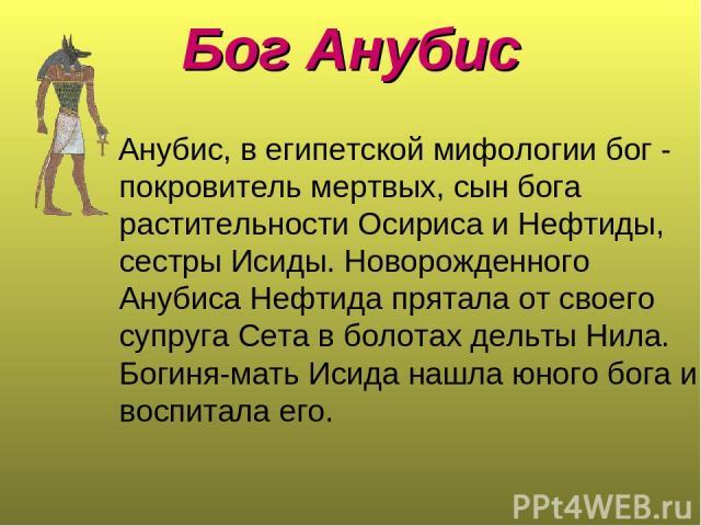 Бог Анубис Анубис, в египетской мифологии бог - покровитель мертвых, сын бога растительности Осириса и Нефтиды, сестры Исиды. Новорожденного Анубиса Нефтида прятала от своего супруга Сета в болотах дельты Нила. Богиня-мать Исида нашла юного бога и в…