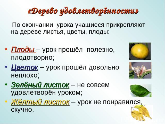 «Дерево удовлетворённости» По окончании урока учащиеся прикрепляют на дереве листья, цветы, плоды: Плоды – урок прошёл полезно, плодотворно; Цветок – урок прошёл довольно неплохо; Зелёный листок – не совсем удовлетворён уроком; Жёлтый листок – урок …