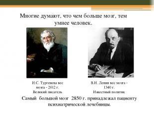 И.С. Тургенева вес мозга - 2012 г. Великий писатель В.И. Ленин вес мозга - 1340