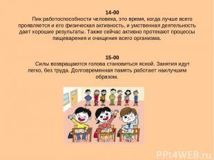 14-00 Пик работоспособности человека, это время, когда лучше всего проявляется и