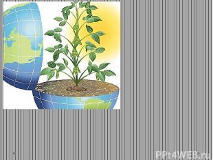 ( Экологическое образование и воспитание ) Экология оболочек Земли, формирующих