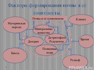Факторы формирования почвы и её компоненты. Минеральные вещества Дентрит Почвенн
