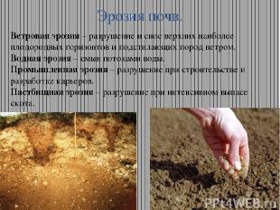 Эрозия почв. Ветровая эрозия – разрушение и снос верхних наиболее плодородных го