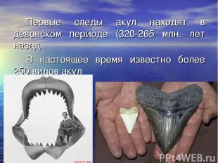 Первые следы акул находят в девонском периоде (320-265 млн. лет назад. В настоящ