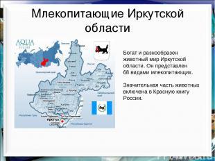 Млекопитающие Иркутской области Богат и разнообразен животный мир Иркутской обла