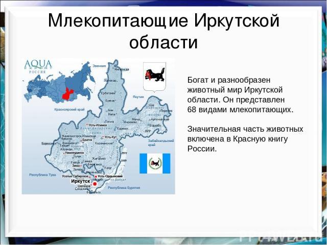 Млекопитающие Иркутской области Богат и разнообразен животный мир Иркутской области. Он представлен 68 видами млекопитающих. Значительная часть животных включена в Красную книгу России.