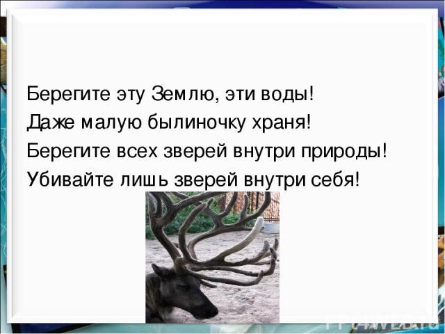 Берегите эту Землю, эти воды! Даже малую былиночку храня! Берегите всех зверей внутри природы! Убивайте лишь зверей внутри себя!