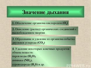 Значение дыхания 1. Обеспечение организма кислородом (О2) 2. Окисление (распад)