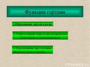 Функции гортани 1.Образование звуков и речи. 2. Рефлекторный кашель при раздраже