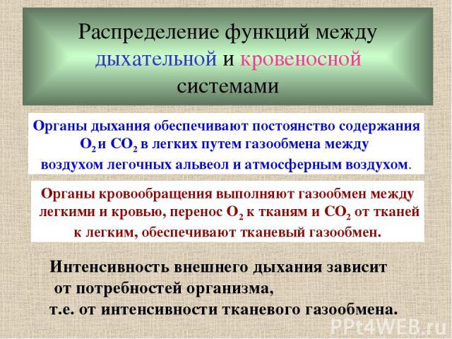 Распределение функций между дыхательной и кровеносной системами Органы дыхания обеспечивают постоянство содержания O2 и CO2 в легких путем газообмена между воздухом легочных альвеол и атмосферным воздухом. Органы кровообращения выполняют газообмен м…