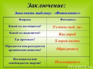 Заключение: Заполнить таблицу: «Фотосинтез» Углекислый газ Кислород Хлоропласты
