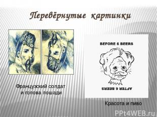 Перевёрнутые картинки Французский солдат и голова лошади Красота и пиво