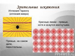 Зрительные искажения Иллюзия Геринга (иллюзия веера) Прямые, на самом деле, пара