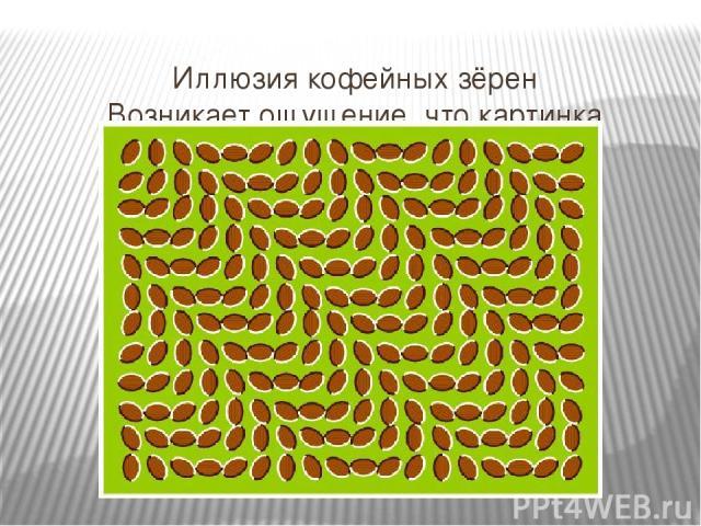 Иллюзия кофейных зёрен Возникает ощущение, что картинка колышится?