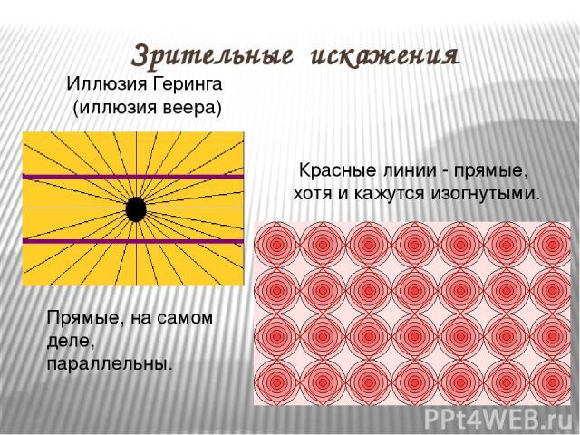 Зрительные искажения Иллюзия Геринга (иллюзия веера) Прямые, на самом деле, параллельны. Красные линии - прямые, хотя и кажутся изогнутыми.