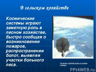 Презентацию подготовил Ученик 9 «А» класса МОУ Гимназии №4 Гусенков Дмитрий. Мат