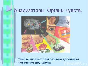 Анализаторы. Органы чувств. Разные анализаторы взаимно дополняют и уточняют друг