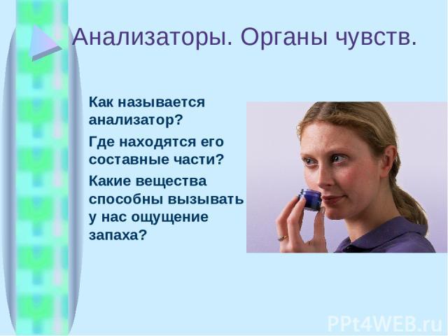Анализаторы. Органы чувств. Как называется анализатор? Где находятся его составные части? Какие вещества способны вызывать у нас ощущение запаха?