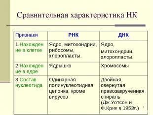 * Сравнительная характеристика НК Признаки РНК ДНК 1.Нахождение в клетке Ядро, м