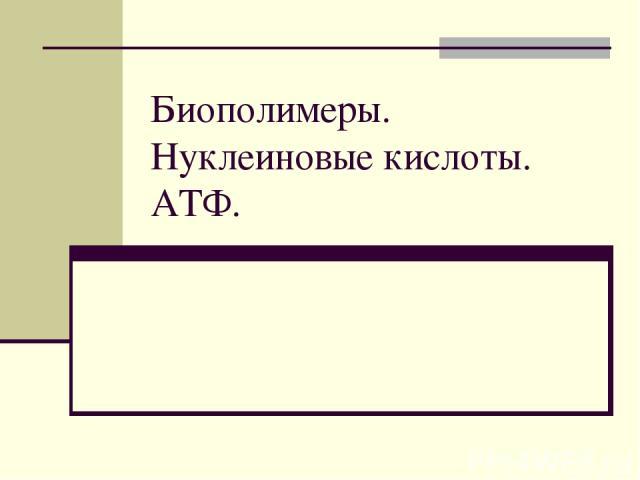 Биополимеры. Нуклеиновые кислоты. АТФ.