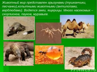 Животный мир представлен грызунами (тушканчики, песчанки),копытными животными (а