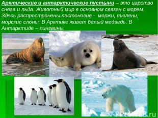 Арктические и антарктические пустыни – это царство снега и льда. Животный мир в