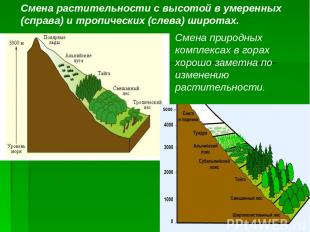 5000 – Смена растительности с высотой в умеренных (справа) и тропических (слева)