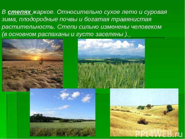 ж В степях жаркое. Относительно сухое лето и суровая зима, плодородные почвы и богатая травянистая растительность. Степи сильно изменены человеком (в основном распаханы и густо заселены ).