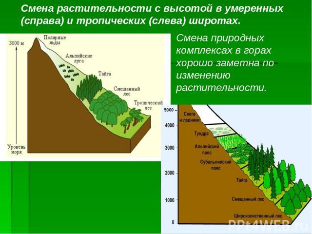 5000 – Смена растительности с высотой в умеренных (справа) и тропических (слева) широтах. Смена природных комплексах в горах хорошо заметна по изменению растительности.