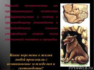 © Жадаев Д.Н., 2005 Переход человечества от присваивающего хозяйства (собиратель