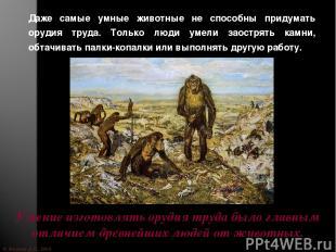 © Жадаев Д.Н., 2005 Даже самые умные животные не способны придумать орудия труда