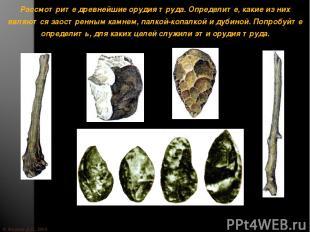 © Жадаев Д.Н., 2005 Рассмотрите древнейшие орудия труда. Определите, какие из ни