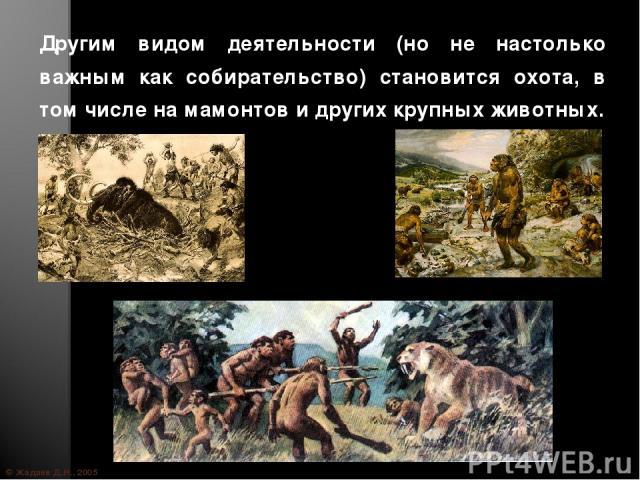 © Жадаев Д.Н., 2005 Другим видом деятельности (но не настолько важным как собирательство) становится охота, в том числе на мамонтов и других крупных животных.