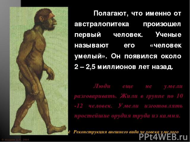 © Жадаев Д.Н., 2005 Полагают, что именно от австралопитека произошел первый человек. Ученые называют его «человек умелый». Он появился около 2 – 2,5 миллионов лет назад. Люди еще не умели разговаривать. Жили в группе по 10 -12 человек. Умели изготов…