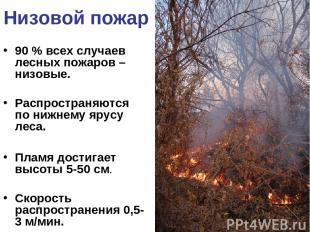 Низовой пожар 90 % всех случаев лесных пожаров – низовые. Распространяются по ни