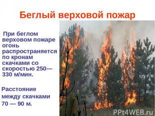 Беглый верховой пожар При беглом верховом пожаре огонь распространяется по крона