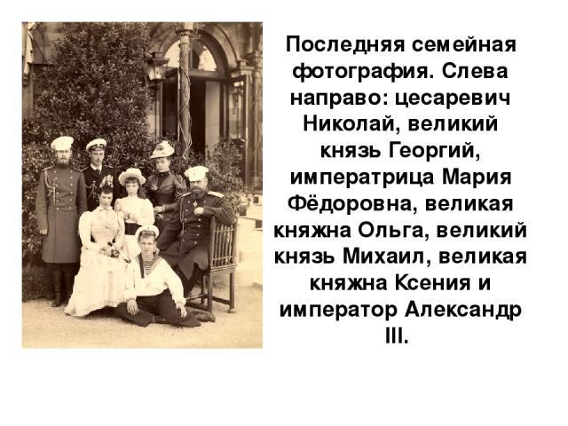 Последняя семейная фотография. Слева направо: цесаревич Николай, великий князь Георгий, императрица Мария Фёдоровна, великая княжна Ольга, великий князь Михаил, великая княжна Ксения и император Александр III.