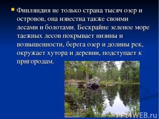 Финляндия не только страна тысяч озер и островов, она известна также своими леса