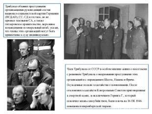 Член Трибунала от СССР в особом мнении заявил о несогласии с решением Трибунала