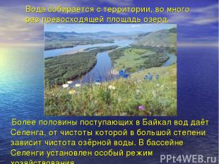 Вода собирается с территории, во много раз превосходящей площадь озера. Более по