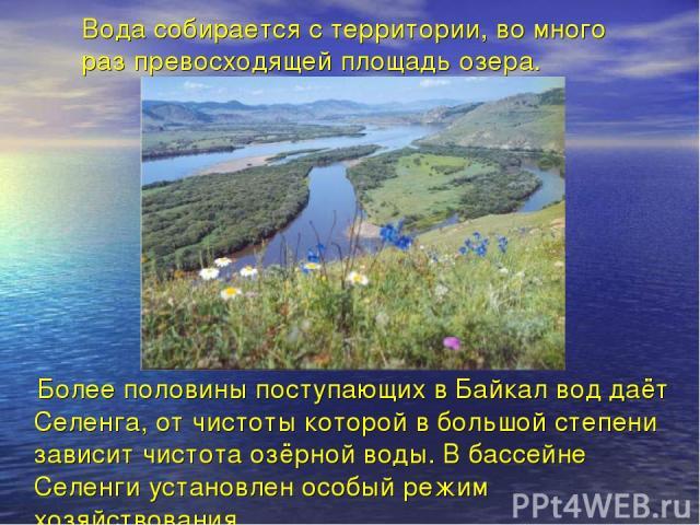 Вода собирается с территории, во много раз превосходящей площадь озера. Более половины поступающих в Байкал вод даёт Селенга, от чистоты которой в большой степени зависит чистота озёрной воды. В бассейне Селенги установлен особый режим хозяйствования.