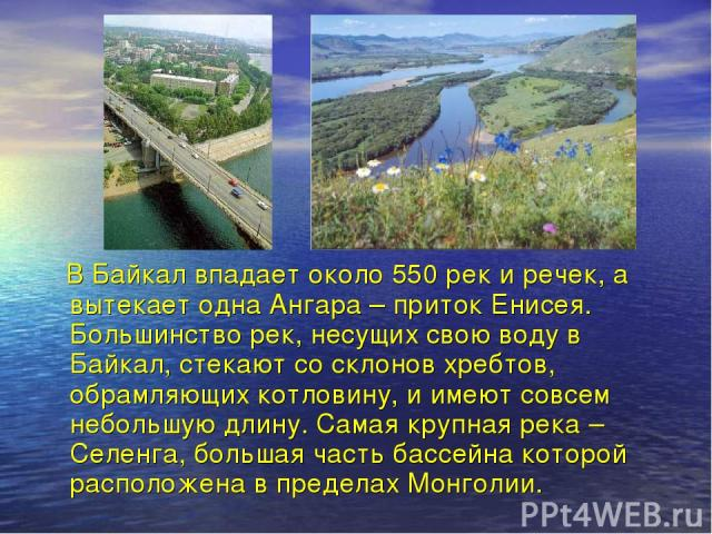 В Байкал впадает около 550 рек и речек, а вытекает одна Ангара – приток Енисея. Большинство рек, несущих свою воду в Байкал, стекают со склонов хребтов, обрамляющих котловину, и имеют совсем небольшую длину. Самая крупная река – Селенга, большая час…