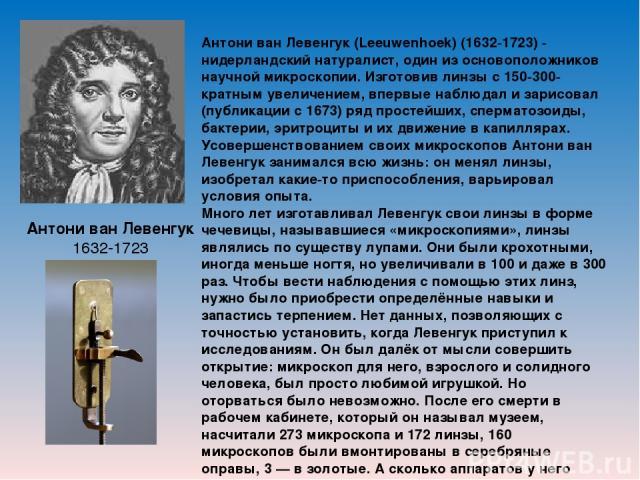 Антони ван Левенгук 1632-1723 Антони ван Левенгук (Leeuwenhoek) (1632-1723) - нидерландский натуралист, один из основоположников научной микроскопии. Изготовив линзы с 150-300-кратным увеличением, впервые наблюдал и зарисовал (публикации с 1673) ряд…