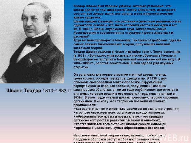 Шванн Теодор 1810–1882 гг. Теодор Шванн был первым ученым, который установил, что клетка является тем микроскопическим элементом, из которого состоят все живые ткани, все органы и все микроскопические живые существа. Шванн пришел к выводу, что расте…