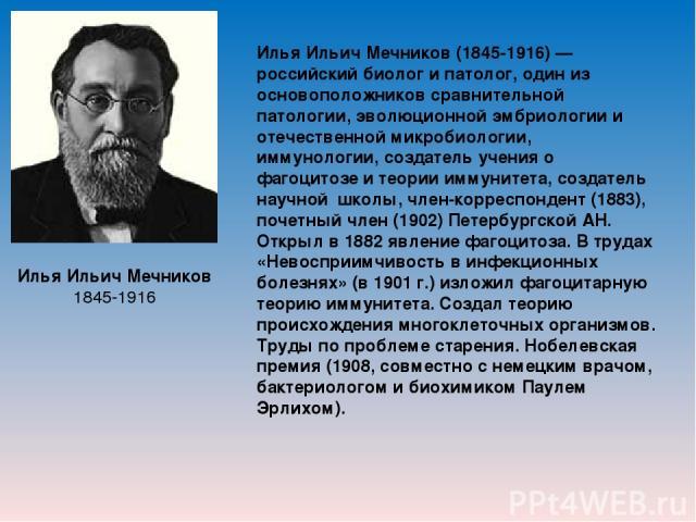 Илья Ильич Мечников 1845-1916 Илья Ильич Мечников (1845-1916) — российский биолог и патолог, один из основоположников сравнительной патологии, эволюционной эмбриологии и отечественной микробиологии, иммунологии, создатель учения о фагоцитозе и теори…